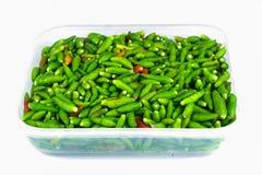 chili świeży Zdjęcia Stock
