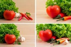 chili świezi czosnku zielonej sałatki pomidory Obraz Stock