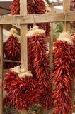 chili вися горячие перцы красные стоковое изображение