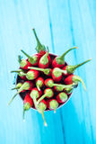 Chili горячих и специи красный pepers Стоковые Фото