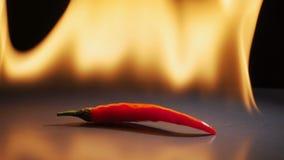 Перец Chili в пламени на черной предпосылке акции видеоматериалы