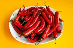 Chili красного перца Стоковая Фотография