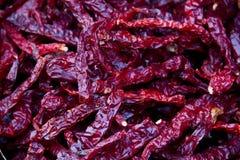 Chili кучи сухой Стоковое Изображение RF
