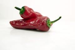Chili/перцы стоковое фото