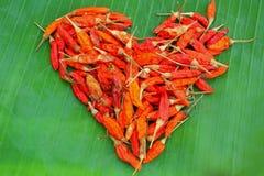 Chili сердца Стоковая Фотография RF