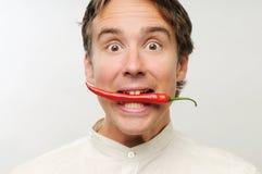 chili укуса стоковая фотография