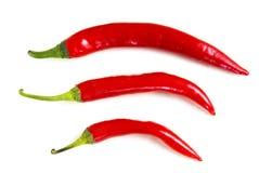 chili Стоковое Изображение