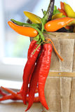 Chili. A lot of bell peppers stock images