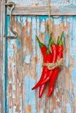 Chili. Royalty Free Stock Photography
