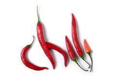 Chili_3. Red hot chili on white background Stock Images