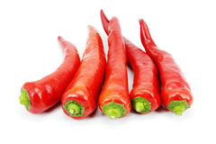 Chili Стоковое Изображение RF