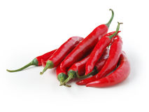 Chili. Red chili with white background Stock Images