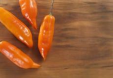 Chili arkivfoto