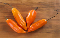 Chili royaltyfria foton