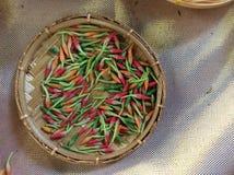 Chili arkivfoton