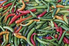 Chili Royalty Free Stock Image