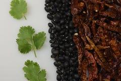 Chili beans cilantro Stock Photography