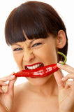 Chili Beauty Stock Images