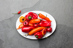 Chili and bell pepper on white plate, slate background, top view.  Royalty Free Stock Photo