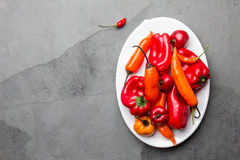Chili and bell pepper on white plate, slate background, top view.  Stock Image