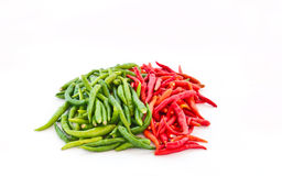 Chili bunch Stock Photography