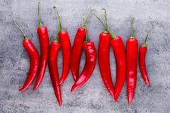 Chili Cayenne pieprz na popielatym tle fotografia royalty free