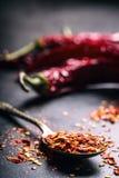 Chili Chili Peppers Flera torkade chilipeppar och krossade peppar på en gammal sked spillde omkring mexikanska ingredienser Royaltyfria Bilder