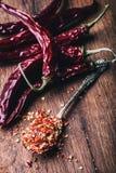 Chili Chili Peppers Flera torkade chilipeppar och krossade peppar på en gammal sked spillde omkring mexikanska ingredienser Royaltyfri Bild