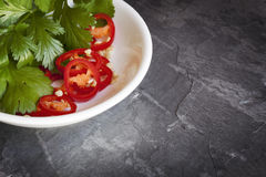 Chili and Cilantro in Bowl over Slate Royalty Free Stock Photography