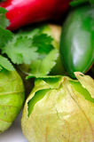 Chili Cilantro Tomatillo Royalty Free Stock Photo