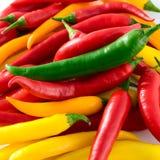 chili colorfull gorący pieprz Obraz Royalty Free