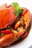 Chili crab Royalty Free Stock Photo