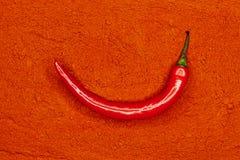 chili czerwień świeża pieprzowa Fotografia Royalty Free
