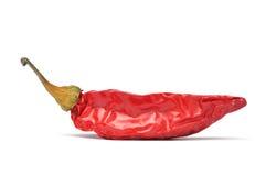 chili czerwień Fotografia Stock