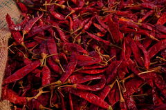 Chili dry. Chili dry is vegetable stock photography