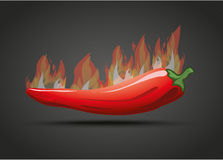 Chili Fire Dark Background Illustration Stock