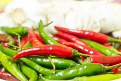 Chili, food ingredient Royalty Free Stock Images
