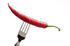 Chili on a fork Stock Images