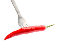 Chili and Fork III Royalty Free Stock Image