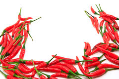 Chili frame Royalty Free Stock Images