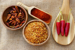 Chili, fresh, dried, crush and as powder. Red Chili fresh pods, dried, crushed and as powder in wooden bowls, wooden cooking spoon and spice scoop on jute fabric Stock Image