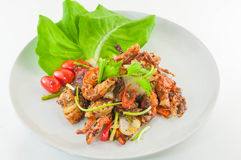 Chili fried crab with black peper, Poo Nim Pad Prik Thai Dum. Stock Photos