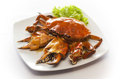 Chili fried crab Stock Photos