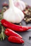 Chili and garlic Royalty Free Stock Photos