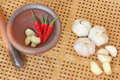 Chili and garlic in mortar on wooden textured Royalty Free Stock Photos