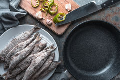 Chili and garlic, smelt on a plate and frying pan Royalty Free Stock Photo