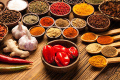 Chili, garlic and spices Royalty Free Stock Photos