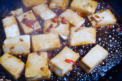 Chili and Ginger Tofu Stock Image