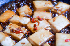 Chili and Ginger Tofu Royalty Free Stock Photo