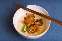 Chili and Ginger Tofu soup Stock Images